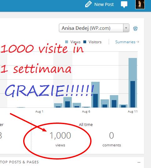 1000 visite in una settimana!!! Grazie!!!